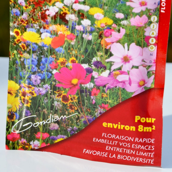 Jach re fleurie floraison express multicolore for Fleurs express