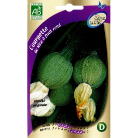 Graines bio de courgettes de Nice à fruits ronds.