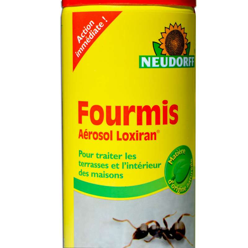 Bombe a rosol cologique anti fourmis action imm diate 400 ml for Anti fourmis maison